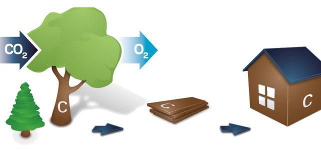 LivingCon ist Partner der CO₂-Bank